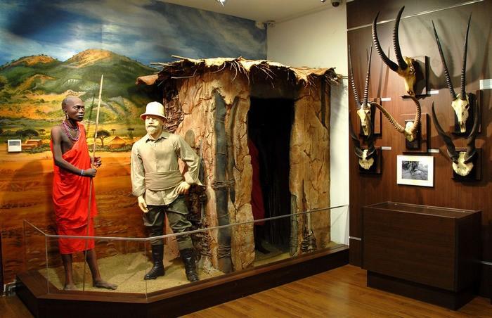 Muzeul De Vanatoare Sibiu